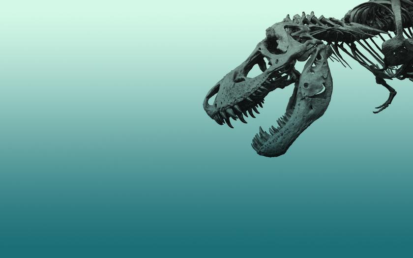 В Аргентине обнаружили новый вид титанозавров