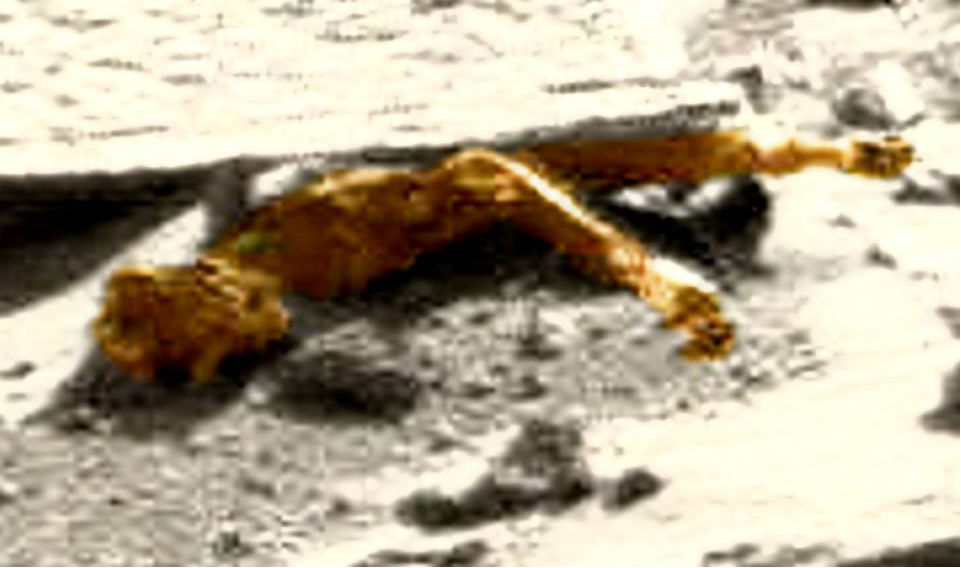 На фотографии с Марса обнаружен придавленный каменной плитой труп марсианина