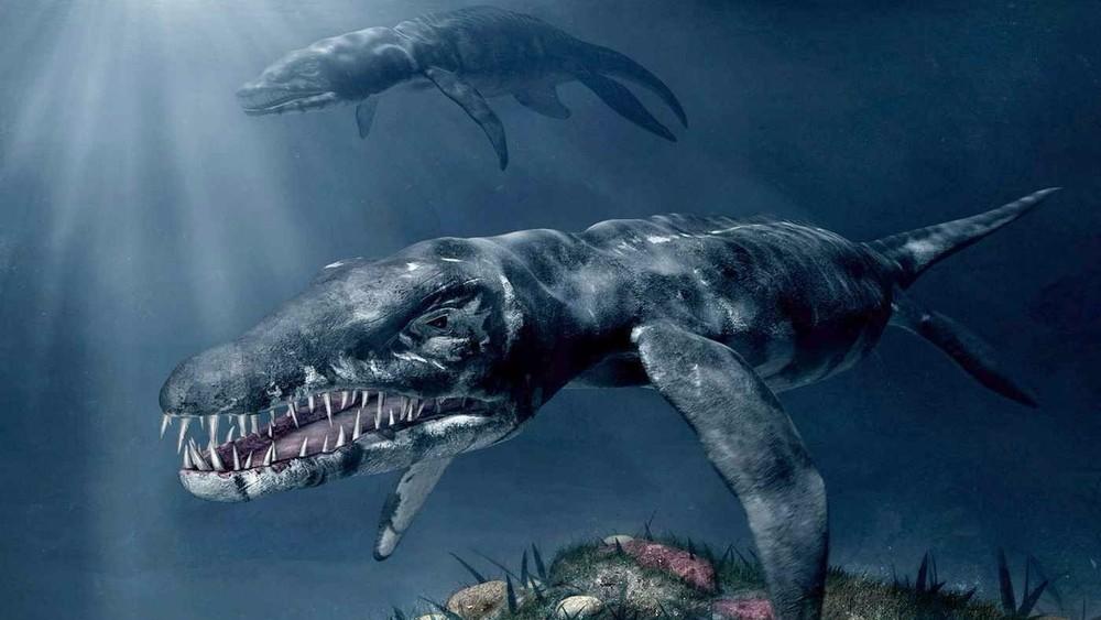 На побережье Британии обнаружили 26-метрового ихтиозавра
