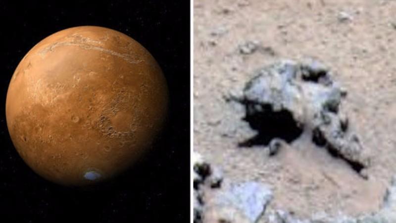 На Марсе нашли останки инопланетного война