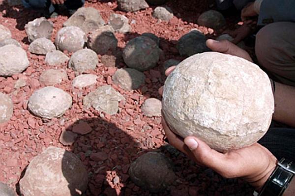 В пустыне Гоби найдены яйца динозавров