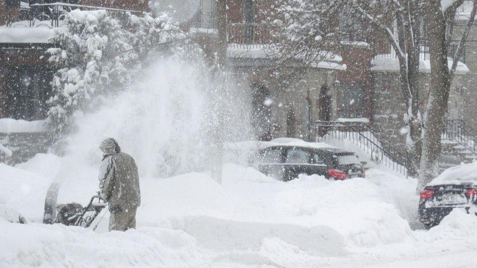 Профессиональные услуги по вывозу снега