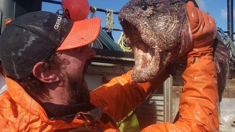 Американец во время рыбалки на Аляске поймал подводного монстра
