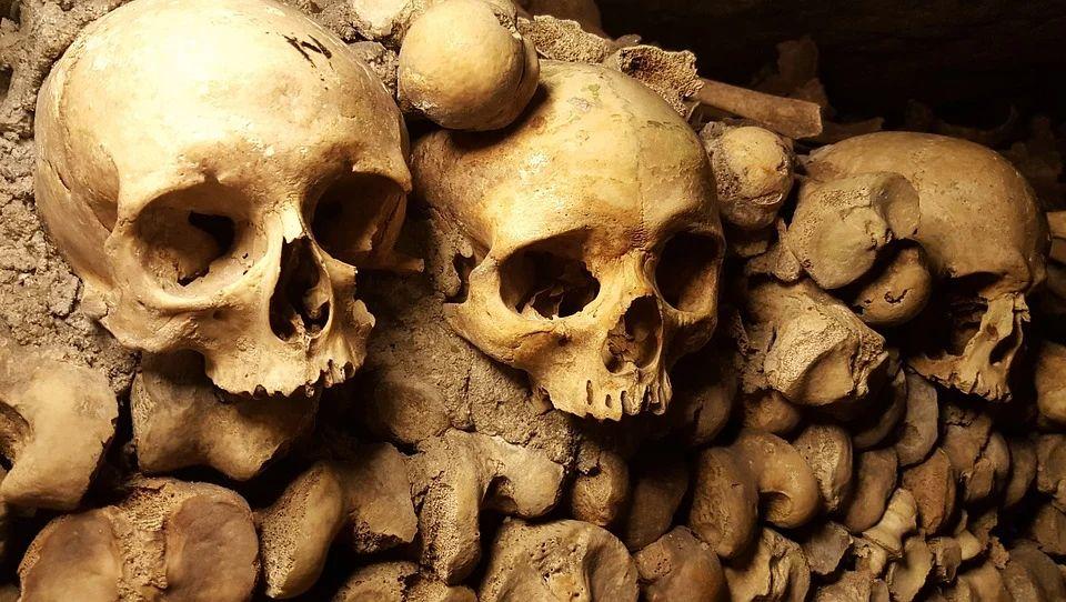 Археологи выяснили, что погубило население Сибири 4000 лет назад
