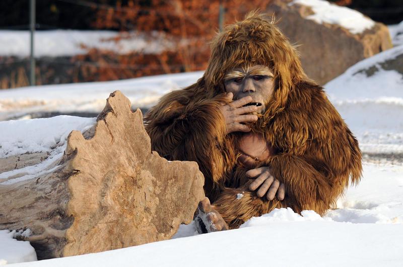 Снежному человеку хотят дать статус исчезающего вида