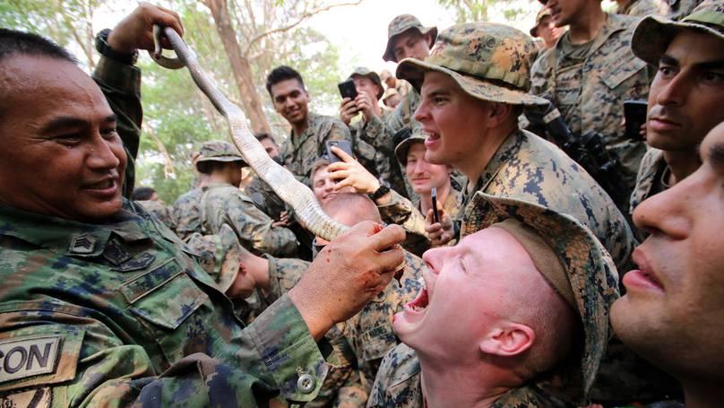 Военные учения, где солдаты едят живых животных и пьют змеиную кровь, могут спровоцировать новую пандемию