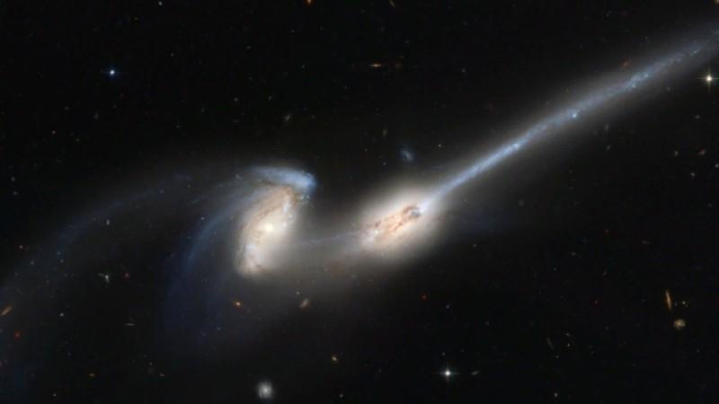 Галактика Андромеда может поглотить Млечный путь