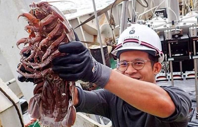 На дне океана нашли гигантского «подводного таракана»
