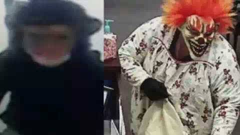 Грабителями банка оказались клоун и обезьяна