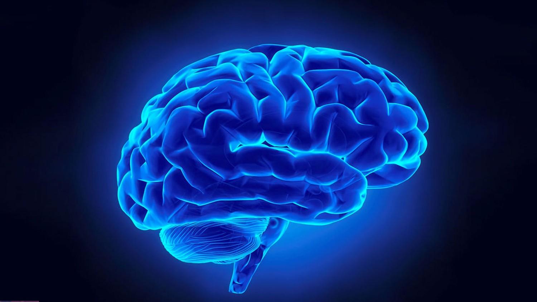 Ученые разработали эффективное устройство для улучшения памяти