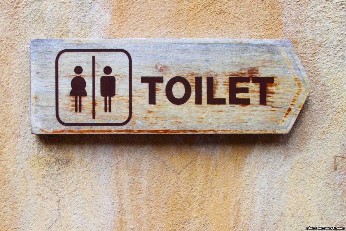 Туалет, сжигающий фекалии