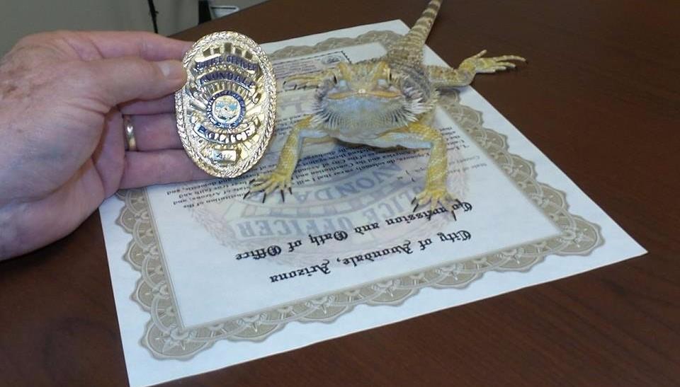 В США ящерица получила значок полицейского