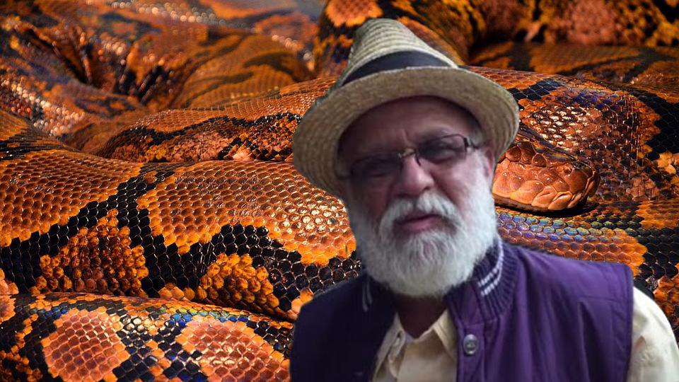 Мужчина провел 72 часа с ядовитыми змеями и они его ни разу не укусили