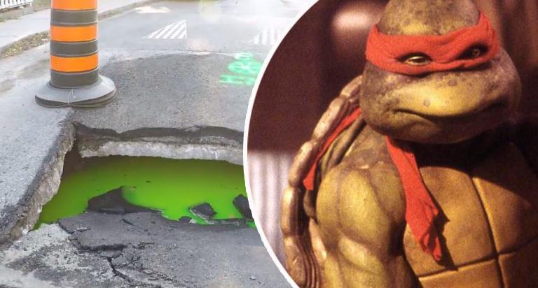 Ждем черепашек-ниндзя? В канализации Торонто заметили зеленую слизь