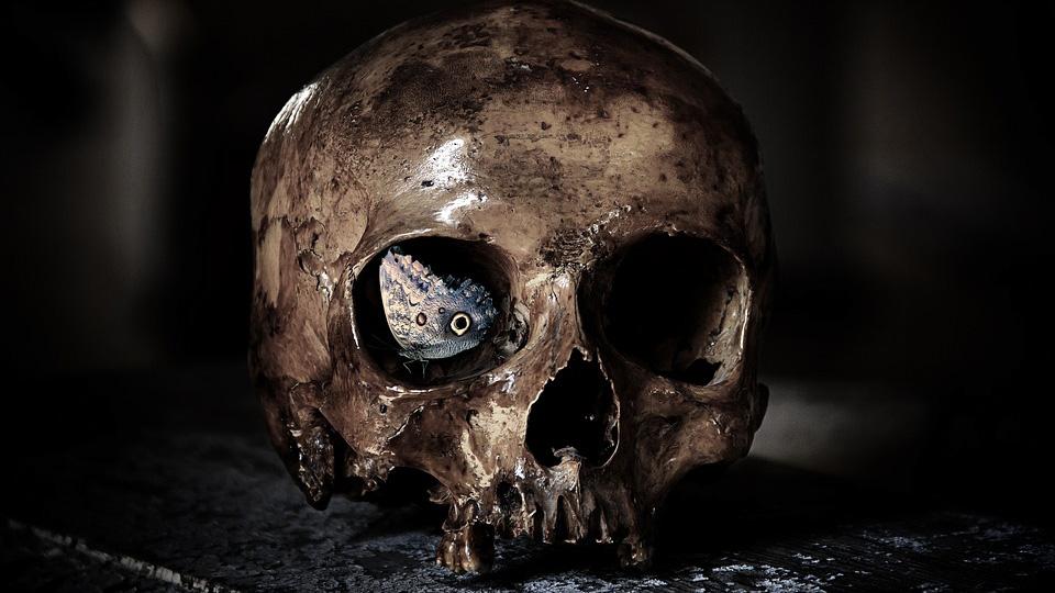 Проткнули тело девятью копьями: в Англии нашли могилу вампира
