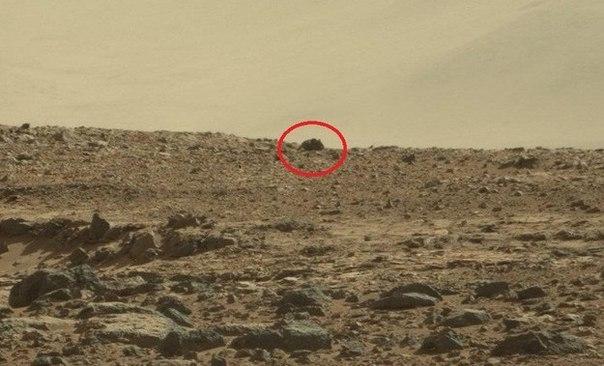 Гигантская мышь на Марсе