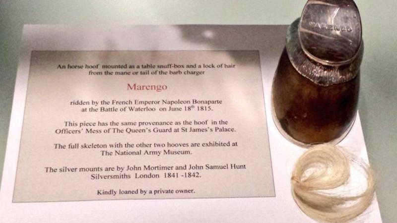 В Англии обнаружили утерянное копыто коня Наполеона Бонапарта