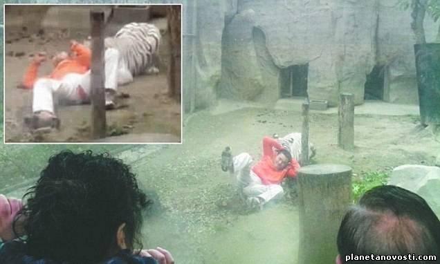Китаец предложил себя на съедение тиграм