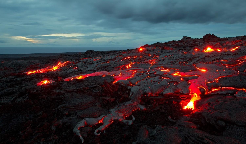После массового вымирания на Земле жизнь быстро возродилась — ученые