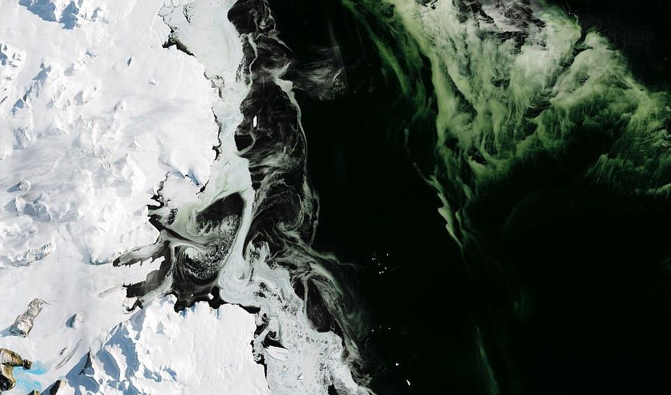 Ученые дали объяснение феномену зеленых льдов в Арктике