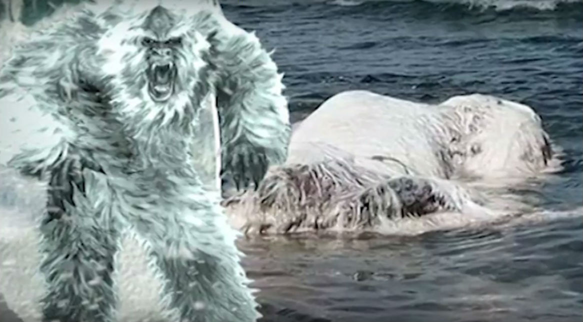 Лохматое белое чудовище нашли на побережье Филиппин