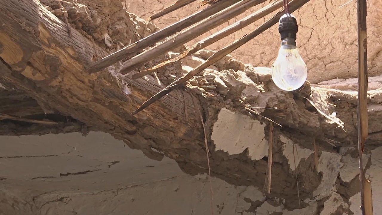 В Египте термиты съели целую деревню