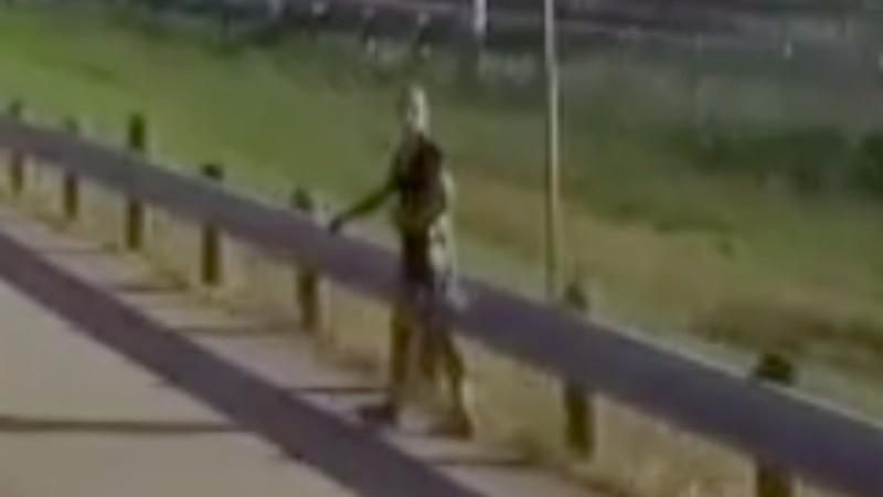В Техасе по дороге ходил инопланетянин