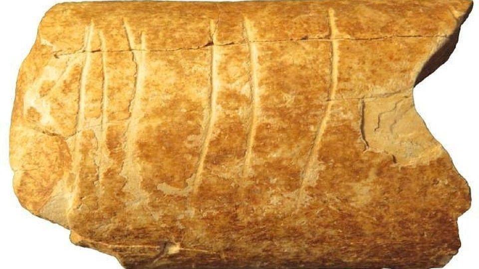 В Израиле нашли загадочный артефакт возрастом 120 тысяч лет