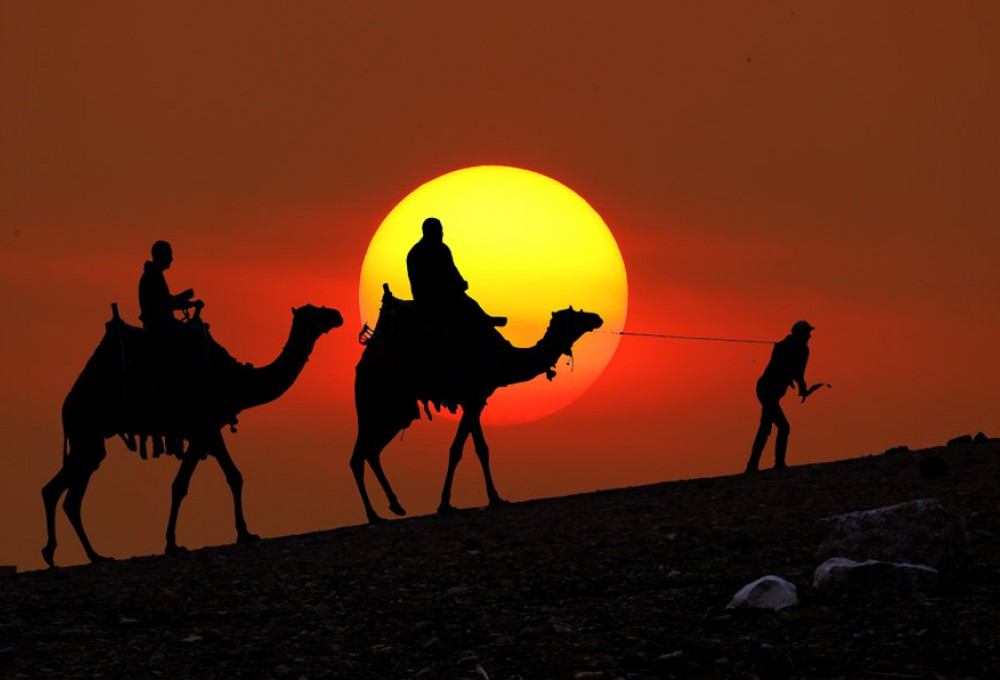 Египтолог объяснил загадку исчезновения 50-тысячной армии в пустыне