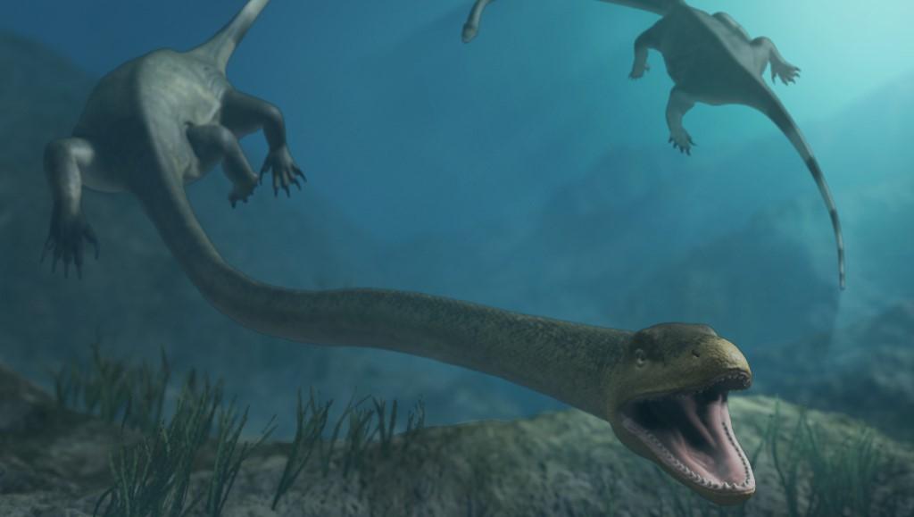 В Китае нашли окаменелого диноцефалозавра накануне живорождения