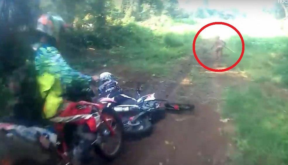 Таинственное существо перепугало мотоциклистов в лесу