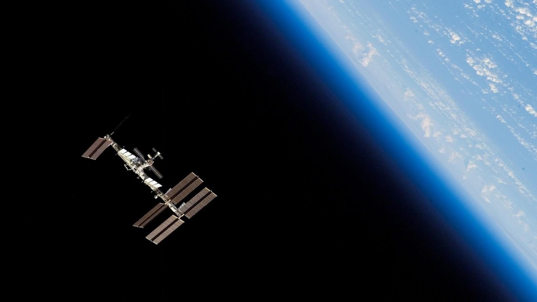 Двум видам водорослей удалось выжить в открытом космосе 450 дней