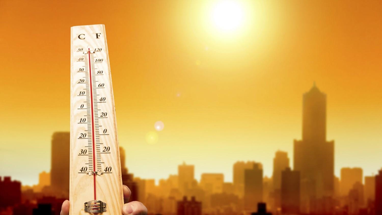 Аномальная жара накрыла Японию, за неделю более 450 человек госпитализировали