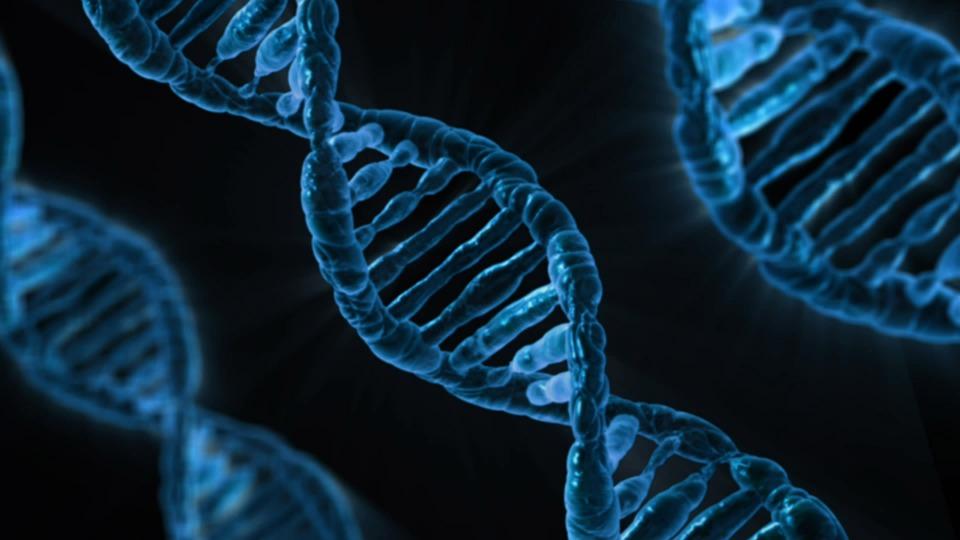 ДНК диагностика хромосомных заболеваний в Киеве от igr-lab.com.ua