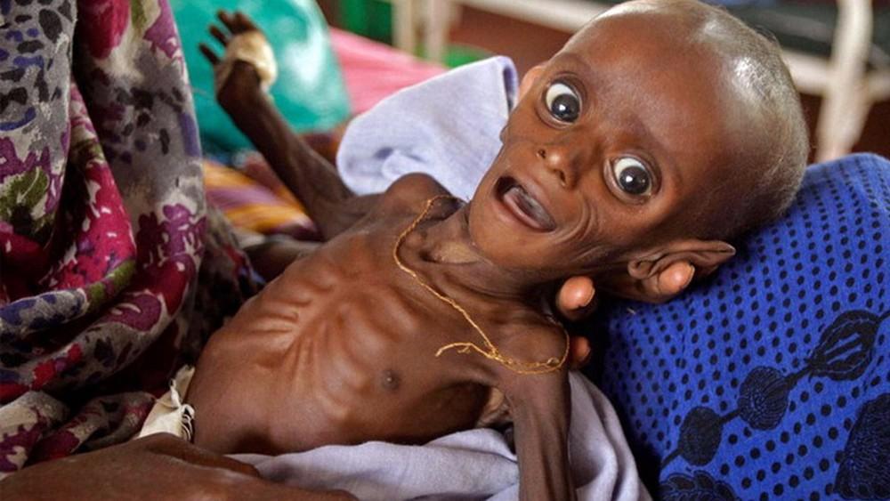 """Приближается глобальный голод: виновато """"Глобальное похолодание"""" или """"Погодные войны""""?"""