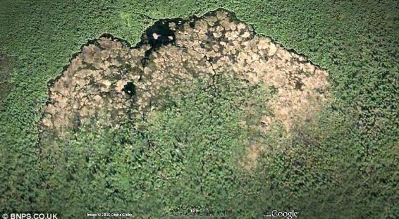 Бобры в Канаде построили плотину, которая видна из космоса