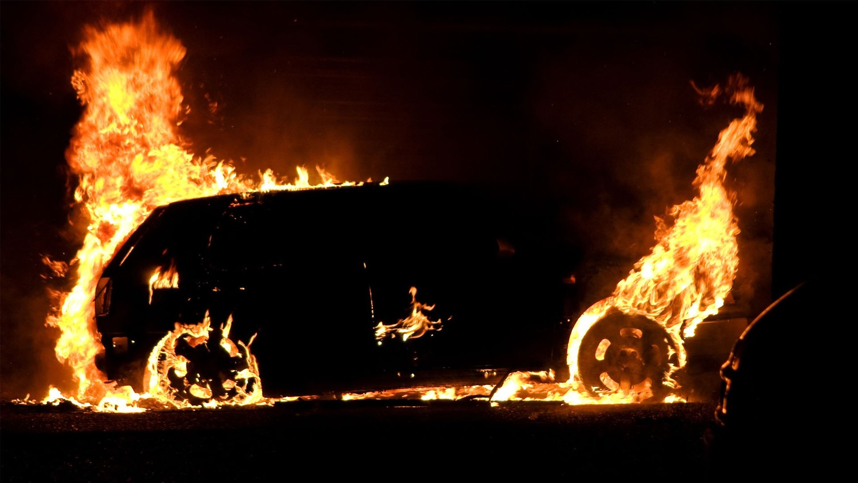 Хозяйка сбитой насмерть собачки мстит владельцам белых авто