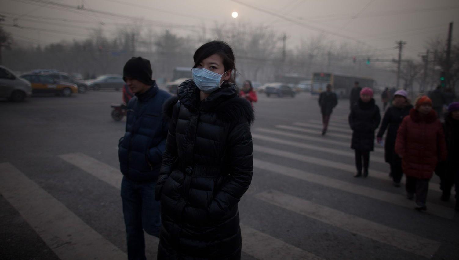 От загрязненного воздуха ежегодно умирают 5,5 млн человек