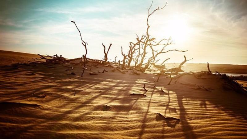 Ученые: на Земле заканчиваются необходимые для жизни ресурсы