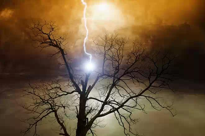 Удар молнии убил троих жителей Марий Эл