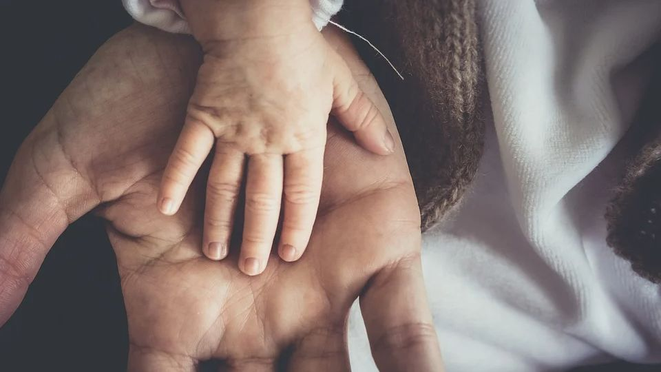 Поговорим о благотворительности: фонд «Алеша» — обман или реальная помощь?