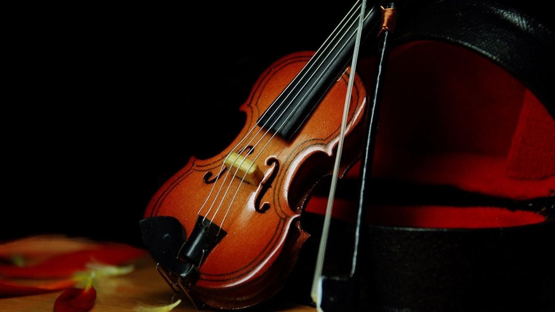 Ученые выявили, что скрипки Страдивари звучат хуже обычных