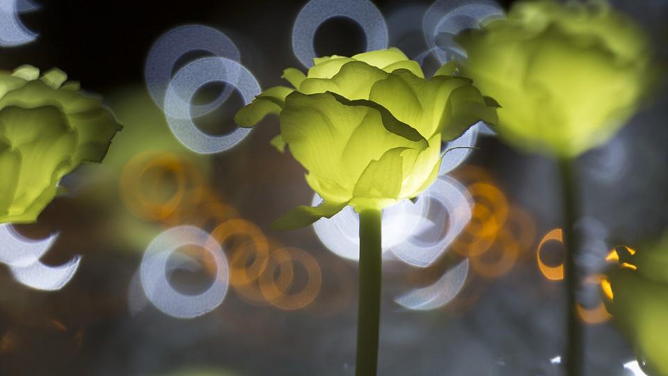 Покупаем качественные и интересные детские светильники