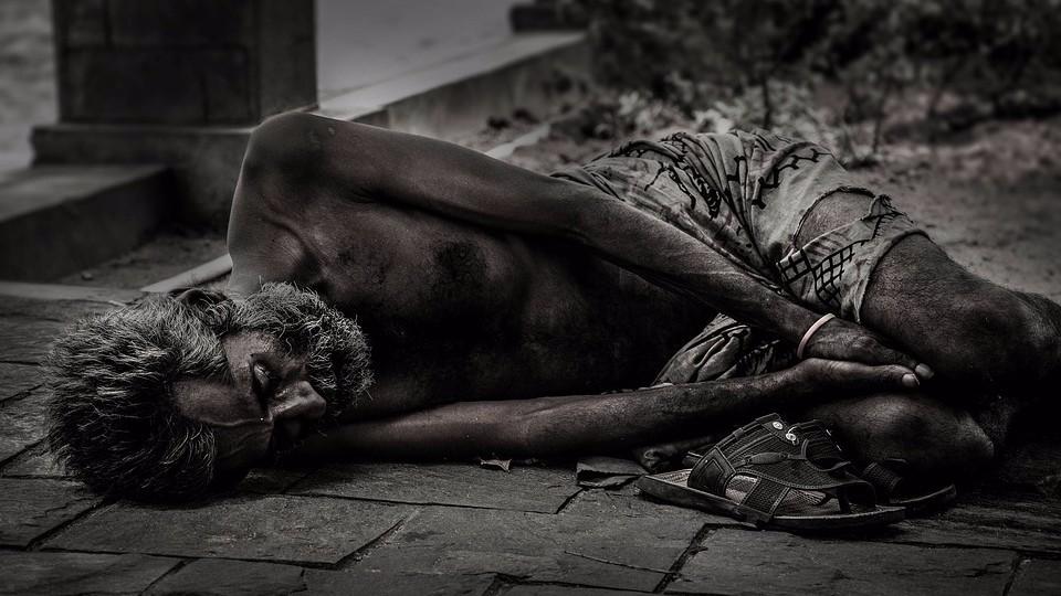 Жителей Земли ждет управляемый голод
