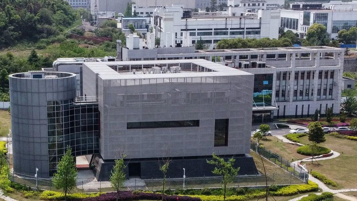 В Уханьской лаборатории собирались изучать самые опасные вирусы в мире