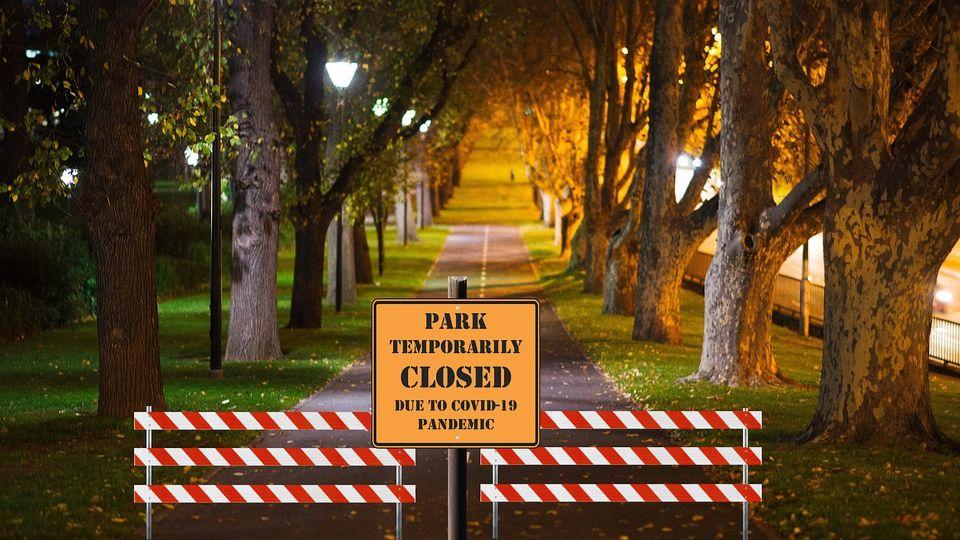 Миру грозит новая пандемия из-за смертельно опасного вируса Nipah