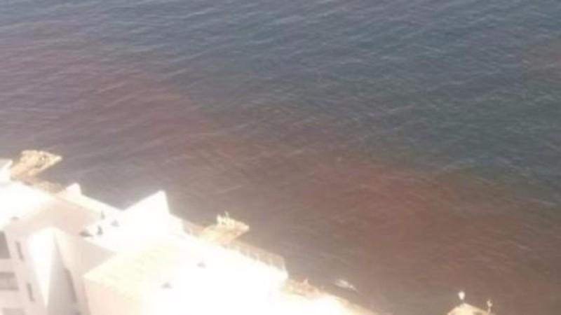 У берегов Одессы появились странные пятна коричневого цвета