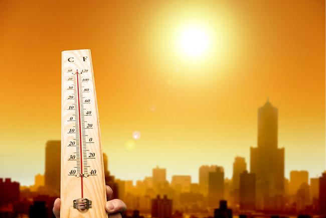 Более 230 японцев пострадали от сильной жары