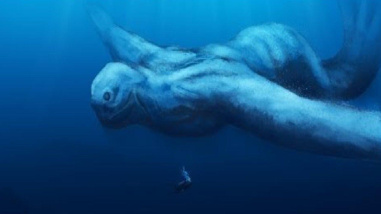 Житель Канады встретил огромного морского монстра