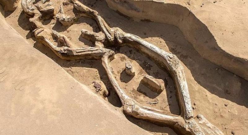 Странный скелет мужчины археологи обнаружили в России